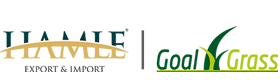 hamle-goalgrass-logo-homepage